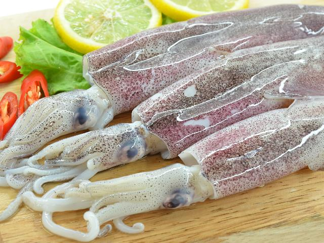 Kalmary Czy Warto Jeść Jakie Mają Składniki Odżywcze
